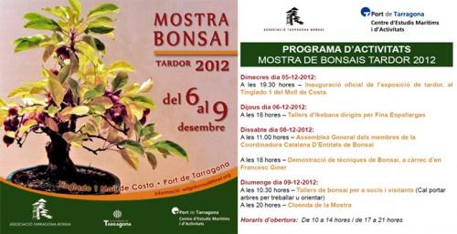 Bonsai Mostra Bonsai Tardor 2012 - eventos