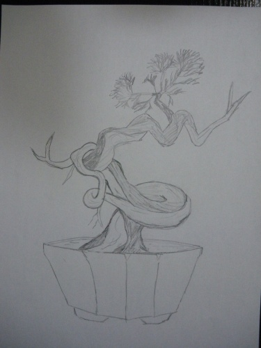 Bonsai Dibujo - Cris