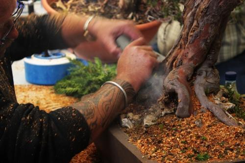 Bonsai Quemando la madera con la dremel - torrevejense