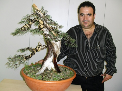 Trabajo final sobre bonsai - Antonio Torres