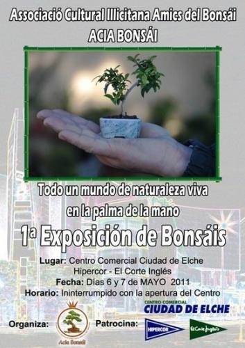 Cartel 1ª Exposicion de Bonsai - Amics del Bonsai ACIA Bonsai