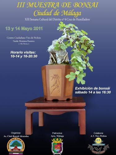 Bonsai Cartel III Muestra de Bonsái Ciudad de Málaga - josegoderi