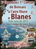 Cartel 1ª Exposició i 1ª Concurs de Bonsais a Blanes