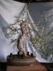 olivo de acodo prueba 2