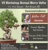 Cartel VII Workshop Bonsai Morro Velho