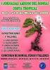 Cartel I Jornadas Aficionados del Bonsai Costa Tropical