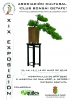 Cartel XIX Exposición de Bonsai de Getafe