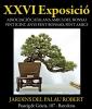 Cartel XXVI Exposicio - Associacio Catalana Amics del Bonsai
