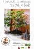 Cartel II Exposicion de primavera Bonsai y Suiseki