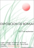 Cartel Exposicion Club Bonsai Puzol
