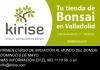 Cartel Curso Básico de Iniciación Al Mundo Del Bonsai